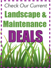 Landscape & Maintenance Deals